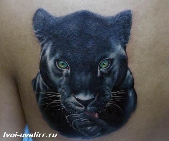 Тату пантера Значение тату пантера Эскизы и фото тату