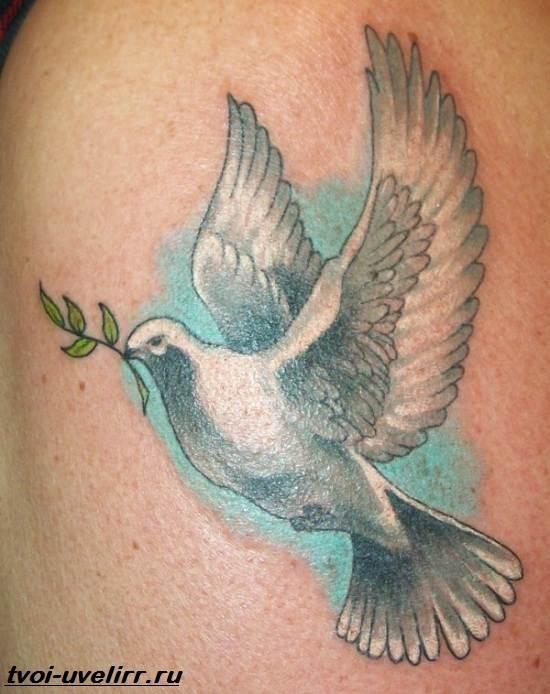 Тату-голубь-Значение-тату-голубь-Эскизы-и-фото-тату-голубь-5