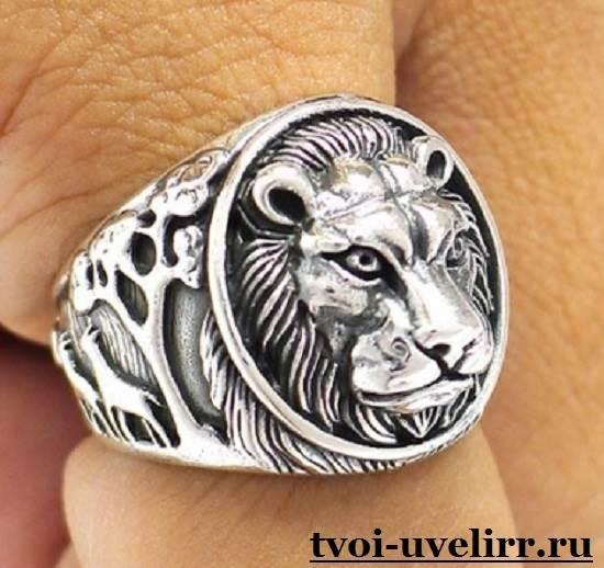 Кольцо-лев-Особенности-и-значение-кольца-лев-1