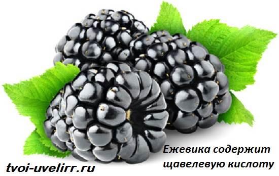 Щавелевая-кислота-Свойства-и-применение-щавелевой-кислоты-5