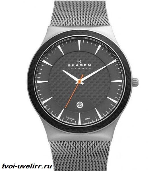Часы-Skagen-Описание-особенности-отзывы-и-цена-часов-Skagen-3