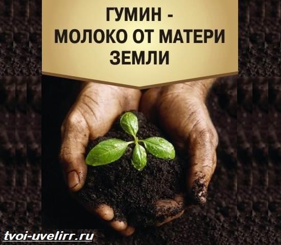 Гуминовая-кислота-Свойства-добыча-применение-и-цена-гуминовой-кислоты-3