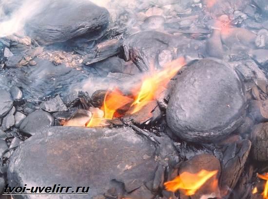 Что-такое-горючие-сланцы-Свойства-добыча-и-применение-горючих-сланцев-5