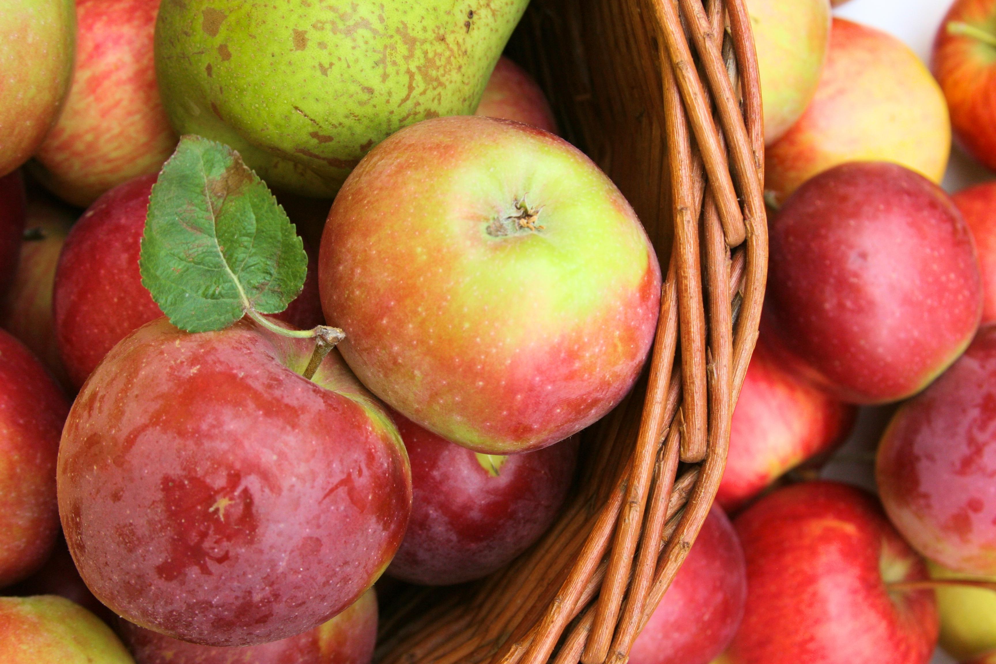 10 důvodů proč jíst jablka každý den & jak je využít v kuchyni