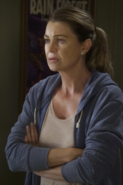 Grey's Anatomy: ABC Releases Season 13 Debut Photos and ...