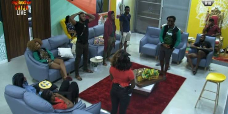BBNaija 2019 Day 63: Names of Housemates for this week eviction