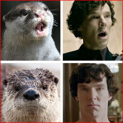 otters-benedict-Capture