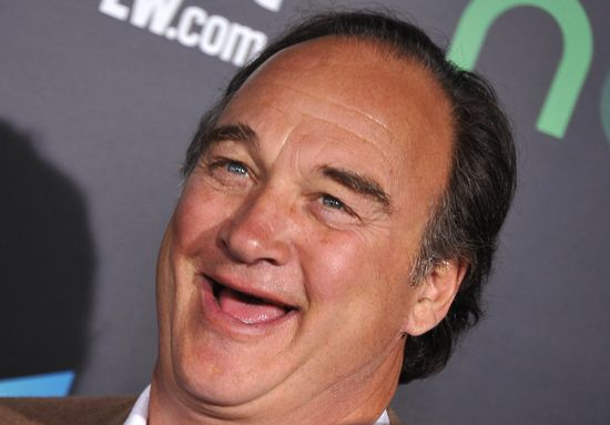 Actor Jim Belushi arrives at the premiere of Lionsgate's 'The Hunger Games' at Nokia Theatre L.A. Live on March 12, 2012 in Los Angeles, California. AFP PHOTO/JOE KLAMAR (Photo credit should read JOE KLAMAR/AFP/Getty Images)