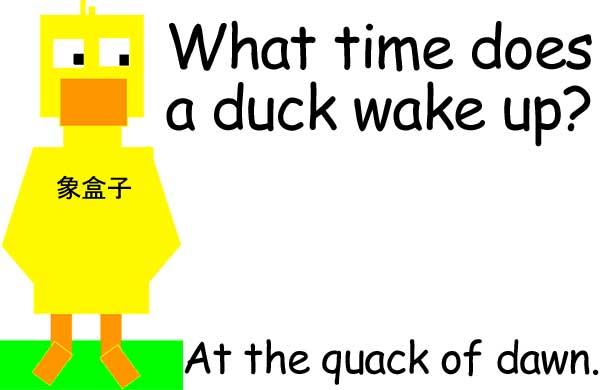 duck quack crack 鴨