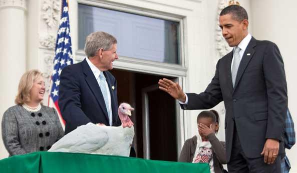 感恩節 美國總統 白宮 赦免火雞 Thanksgiving White House pardon turkey