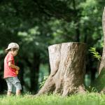 【岩手縣二戶郡】岩手縣最大的兒童館「岩手兒童森林」!為您介紹一個為小孩子打造的遊樂園!
