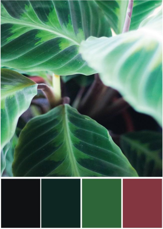 Farbpalette Rot - grün - Tweed & Greet