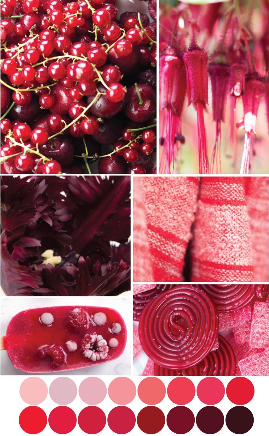 Rote Farbpalette - Tweed & Greet