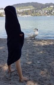 Kind am Strand, vor einem Schwan stehend