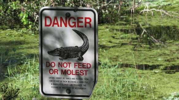 No Molest!