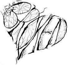 broken_heart13