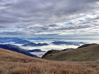 Sea of clouds with sprouting hills, view from Peak 3