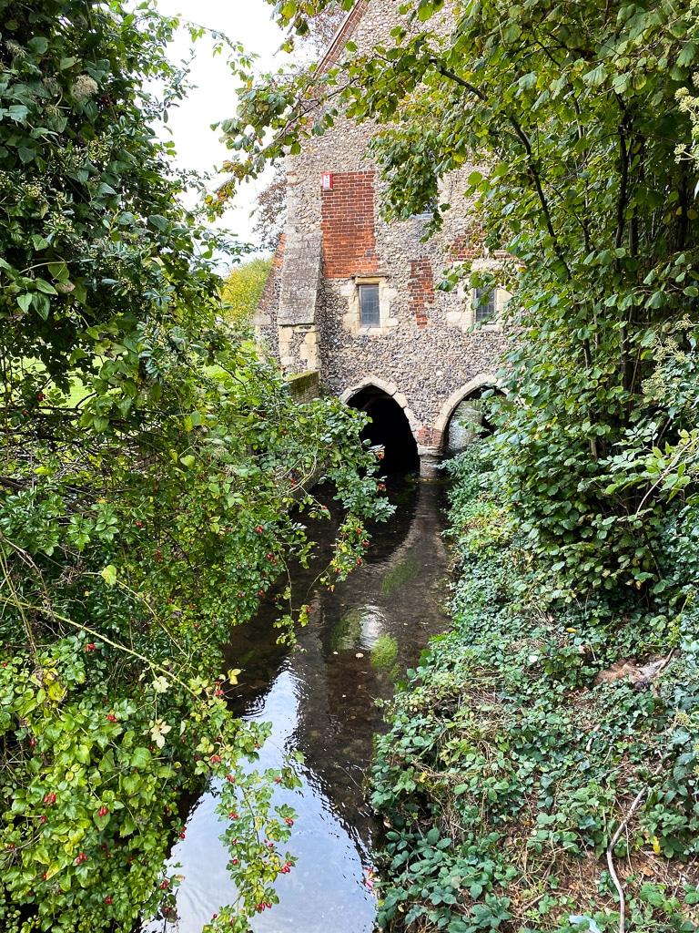 Canterbury garden