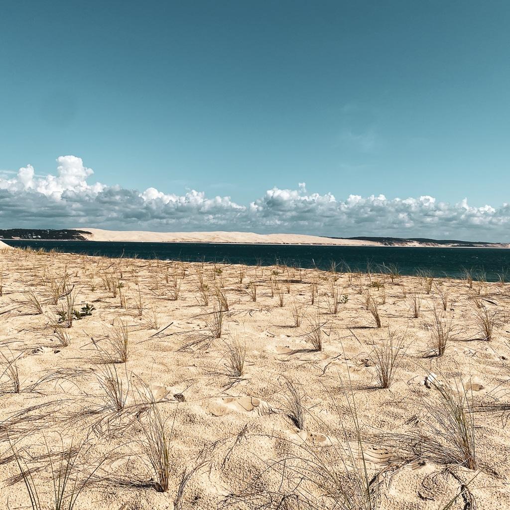 dune du pilât vue depuis la plage du cap ferret