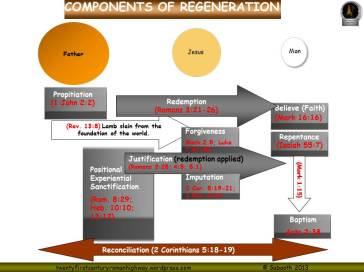 Regeneration pic