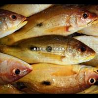 七種美味台灣漁產和料理方式介紹