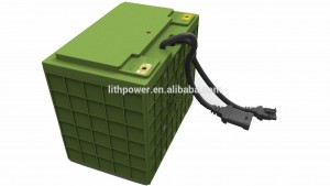 lifepo4 canbus batteries