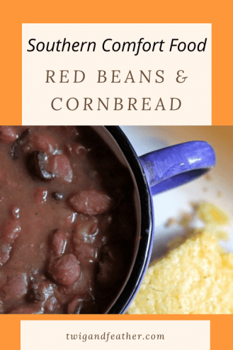 Blue cup full of cooked red beans, and a slice of cornbread on the side