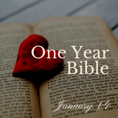 One Year Bible: January 14