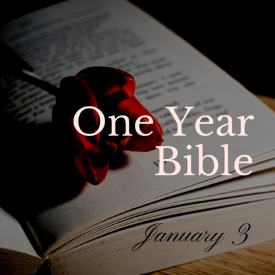 One Year Bible: January 3