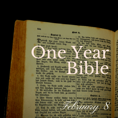 One Year Bible: February 8