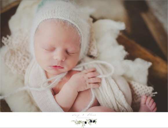 bonnets and babies photography session