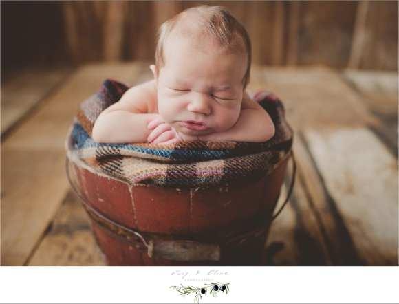madison area newborn photographer