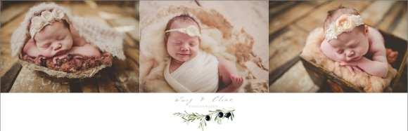 head flower, newborn, sun prairie, WI
