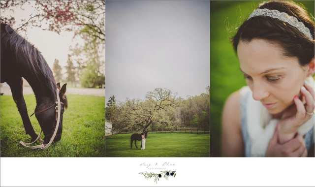 outdoors, horses, rustic, portraits, Minnesota