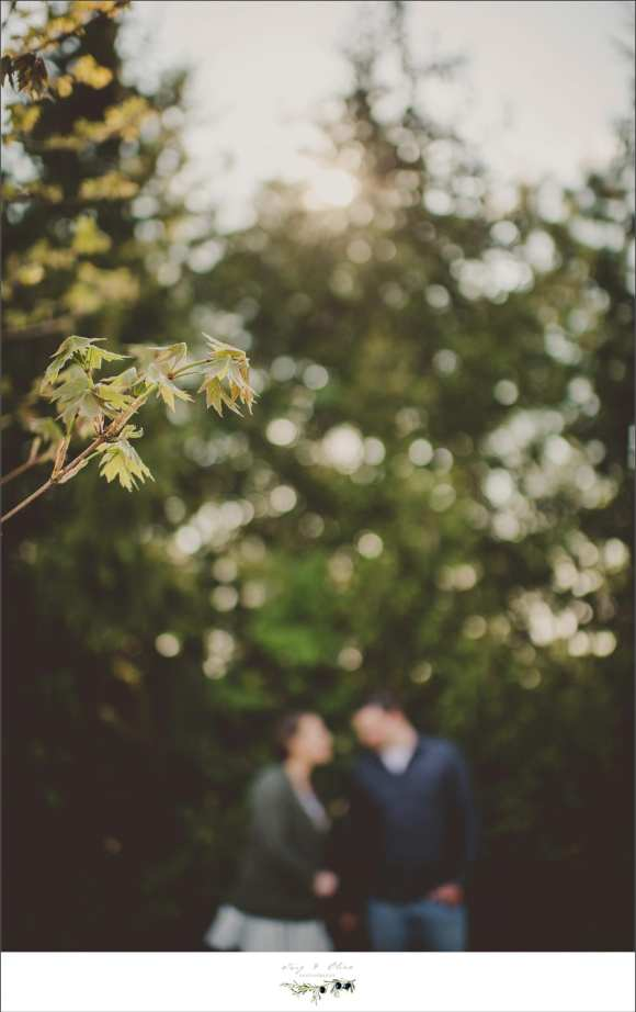 couples and engagement sessions, Twig and Olive Photography