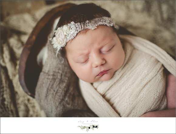 cherub, angelic, hair flower, headband, swaddled, newborns, TOP