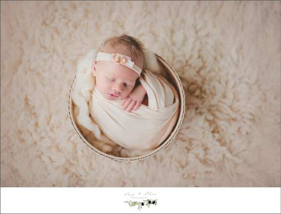 baskets, buckets, pails, elegant wraps, hair flowers, head bands, soft light, newborns, babies, Twig and Olive Photography
