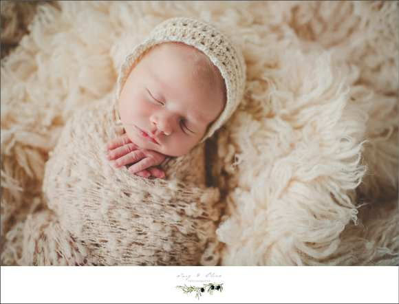bonnets, blankets, wraps, hair flowers, head bands, soft light, babies, newborns, angels, miracles, Twig and Olive Photography