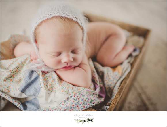 bonnets, blankets, baskets, booties, wraps, wrinkles, little feet, little hands, cherish, babies, Twig and Olive newborn photography