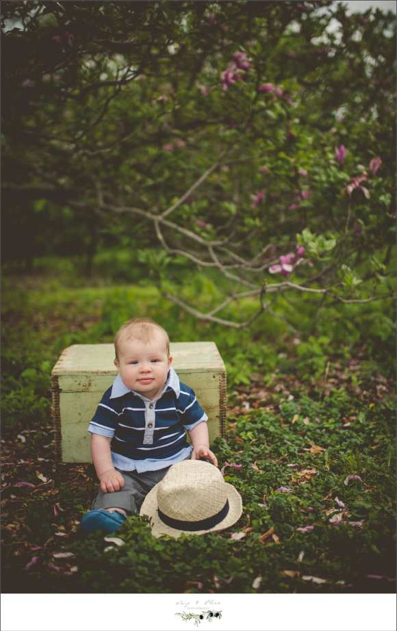 six month old session, Madison WI, Twig and Olive, Wisconsin photography, babies, blankets, smiling happy babies, happy parents, outdoor sessions, blooming flowers, baskets, benches, fedoras, hats, chunky babies, trees, outdoor backdrops, Twig and Olive Photography babies, baskets, buckets, bonnets, smiles, baby stuff, vintage, rustic, TOP, Twig and Olive, Dane county photography, Madison area photography, sunset photography, Sun Prairie photographers