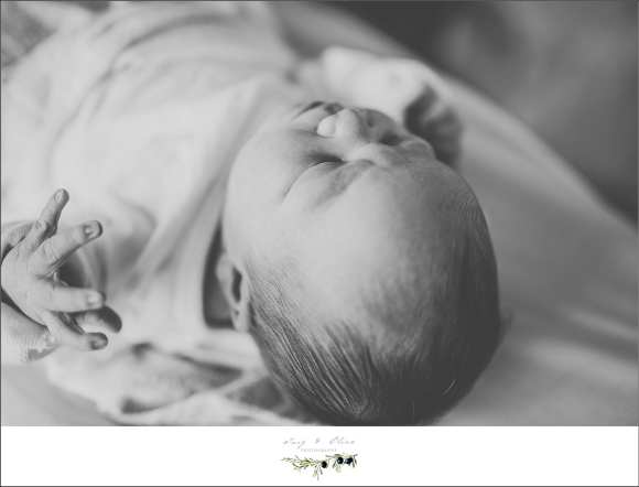 black and white photography, newborns, born yesterday, hospital photography, swaddled, miracles, precious, newly newborns, Twig and Olive photography hospital newborns, wicked awesome, TOP