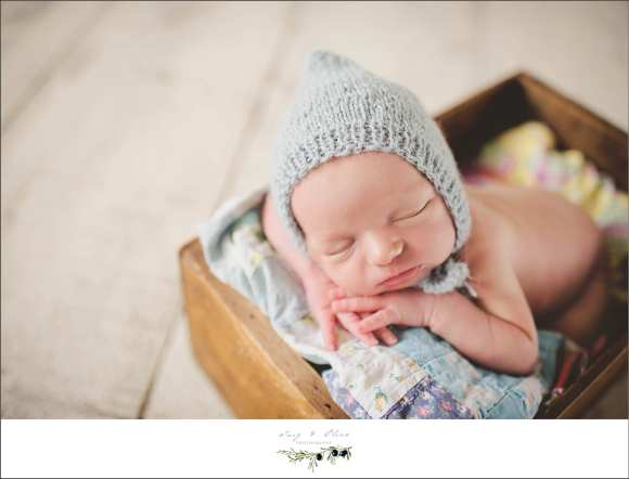 just chilling, newborns, swaddled, babies, rustic, soft light, moms and babies, sun prairie area newborns, bonnets, baskets, buckets, booties, twig and olive newborns