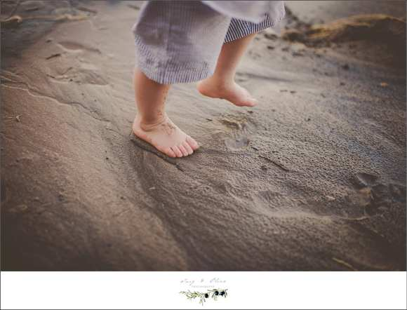 wet toes, sandy beaches, family sessions