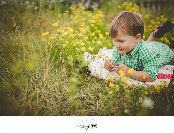 older brother, green grass, yellow flowers, blankets, checkered shirt