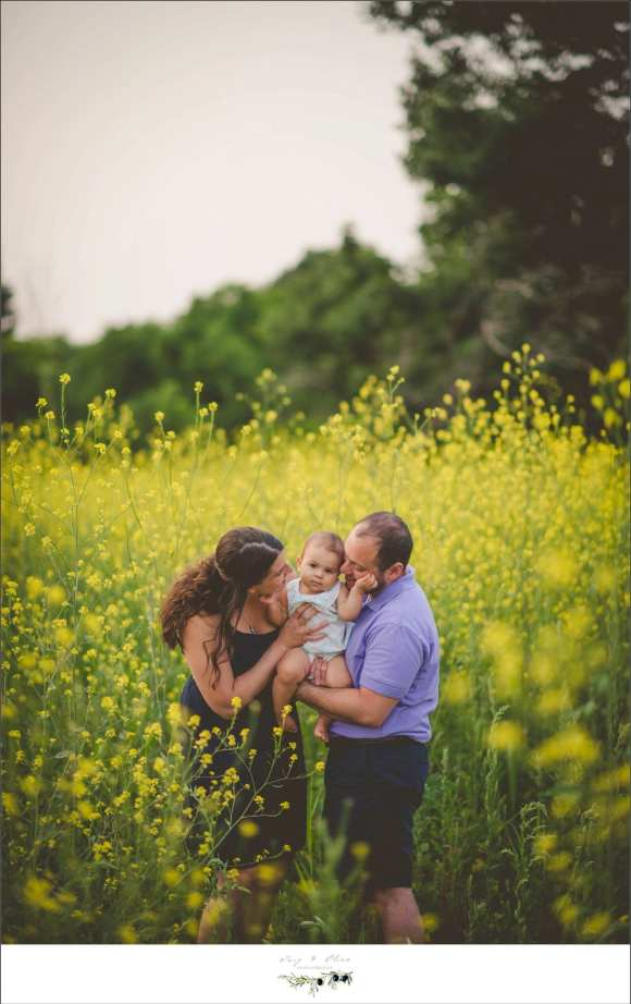 parents, yellow flowers, greenery, embrace, Twig and olive