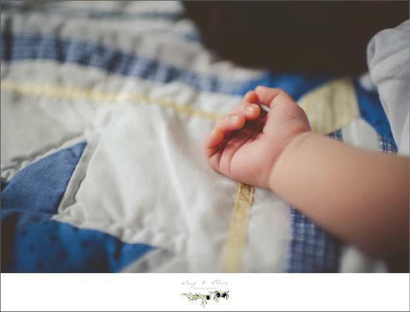 blankets, little hands, detail shots, newborn sessions