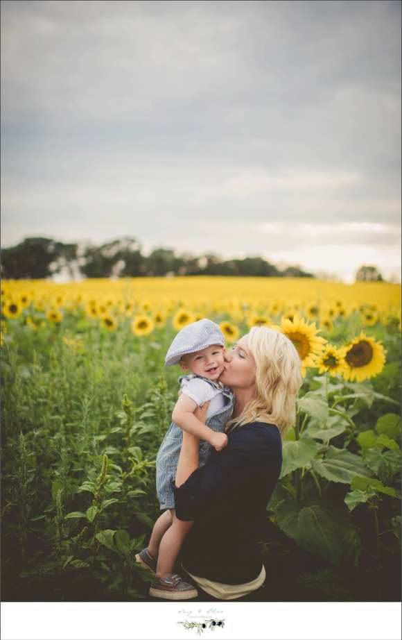 moms and sons, sunflowers