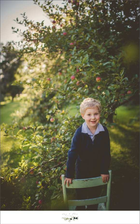 sweater, apple trees, brother