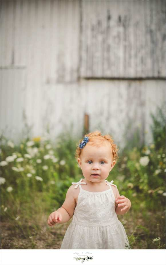 baby ginger, prairie flowers