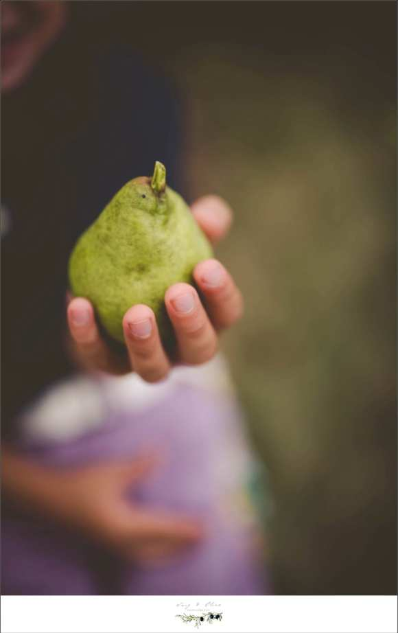 holding pears